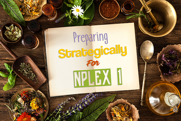 How to Strategically Prepare for NPLEX 1