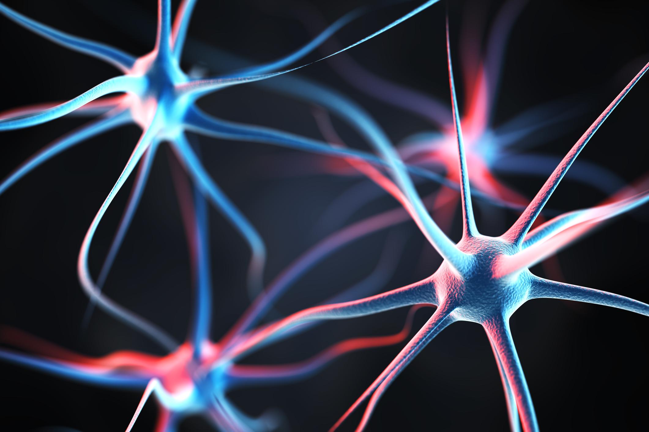 Neurology MOC